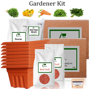 Plastic Pots Gardener Kit Value Added- Methi, Capsicum Yellow, Carrot, Green Chilli Small, Amaranthus (Buy Complete Grow kit/ Growing kit Online India)