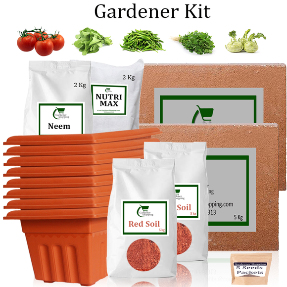 Plastic Pots Gardener Kit Value Added- Round Tomato, Spinach, Green Chilli Small, Methi, Knol Khol (Buy Complete Grow kit/ Growing kit Online India) - Gardenershopping