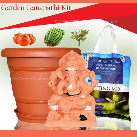 15 inch Garden Ganapathi kit- Eco friendly Garden Ganapathi that will grow into a plant - Gardenershopping