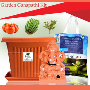 11 inch Garden Ganapathi kit- Eco friendly Garden Ganapathi that will grow into a plant - Gardenershopping