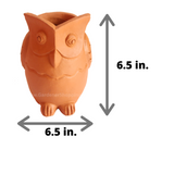 Decorative Terracotta Planters (OWL CLAY POT) - Gardenershopping