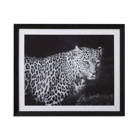 Basset Mirror Realism A Leopard's Gaze in Cream/Black