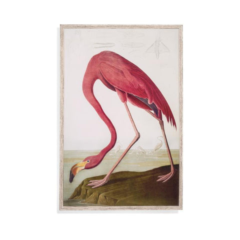 Bassett Mirror Flamingo Framed Art