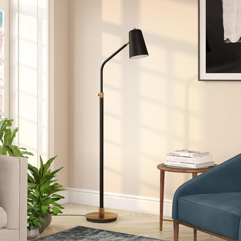 Hudson & Canal Austen Matte Black and Brass Finish Floor Lamp