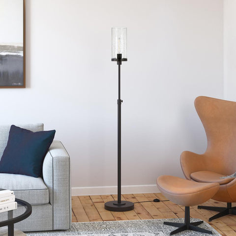 Hudson & Canal Frieda Blackend Bronze Floor Lamp Seeded Glass