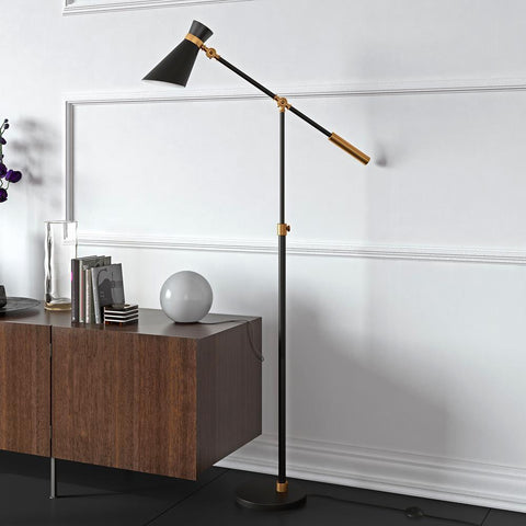 Hudson & Canal Rex Floor Lamp in Black and Brass