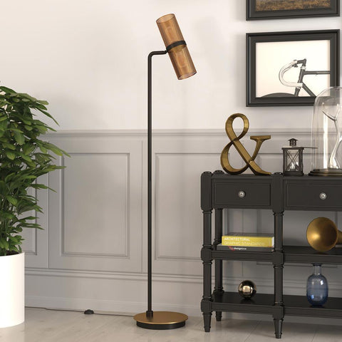 Hudson & Canal Zevon Matte Black and Brass Floor Lamp