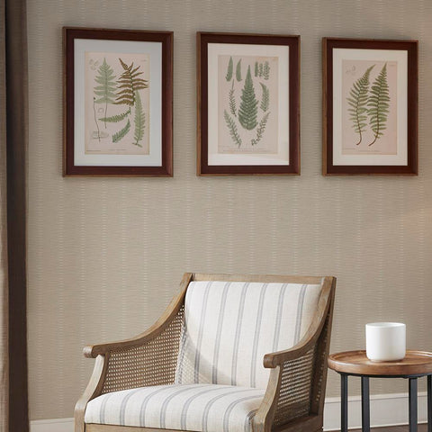 Martha Stewart Lady Fern Collection Single Mat Framed Graphic 3 Piece Set