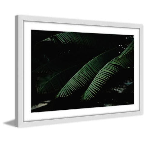 Night In The Tropics Framed Painting Print