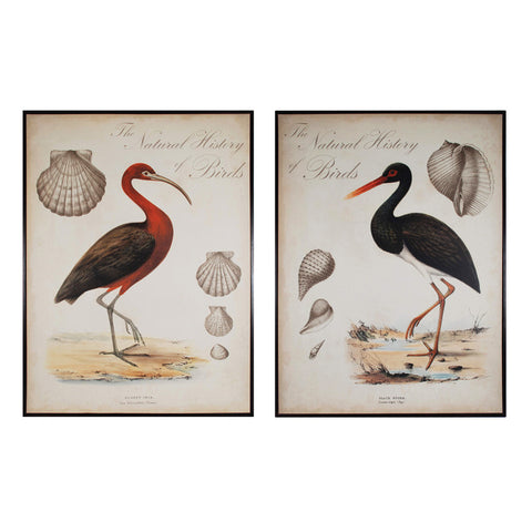 Sterling Industries 10200-S2 Heron Anthology I and II