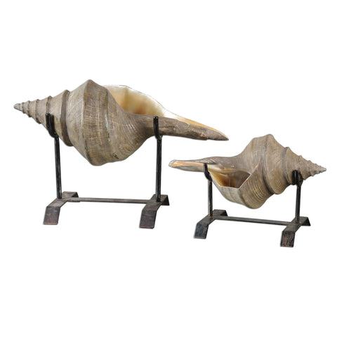 Uttermost Conch Shell Sculpture (Set of 2)