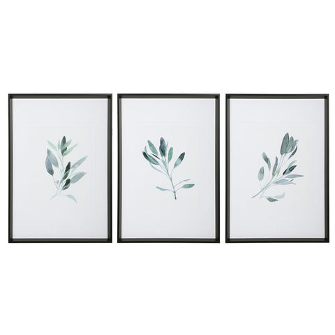 Uttermost Simple Sage Watercolor Prints, S/3