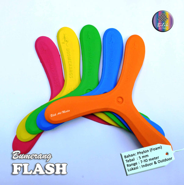 Educational Toys Boomerang