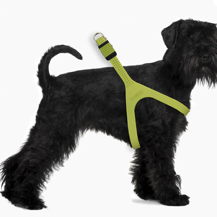 Spikefly Harness