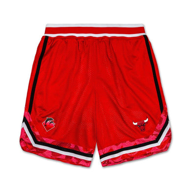 Pink Dolphin x NBA - Mesh Shorts - Chicago Bulls - XL
