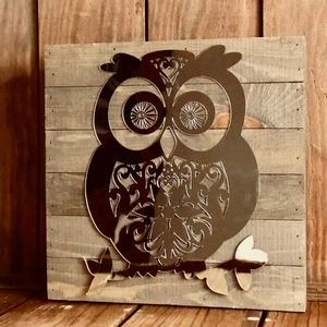Mirrored Owl Wall Hanging