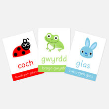 welsh colours flashcards. toddler activities for welsh children. animals and colours. learn explore and have fun
