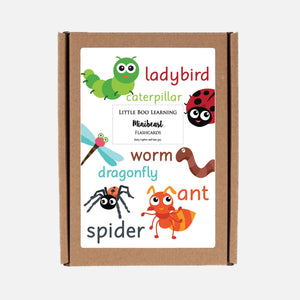 READY-TO-POST 2 Pack Minibeast Hunt Mat (Wipe Clean) & Flashcards  <br /> <br />Colour: Green