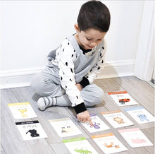 Animal Colours Toddler Flashcards