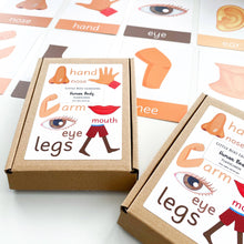 Human Body Toddler Flashcards