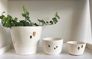 Growstudio Gold Blots Plant Holders