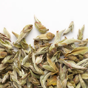 White Tea - Nan Mei Wild Tree Buds