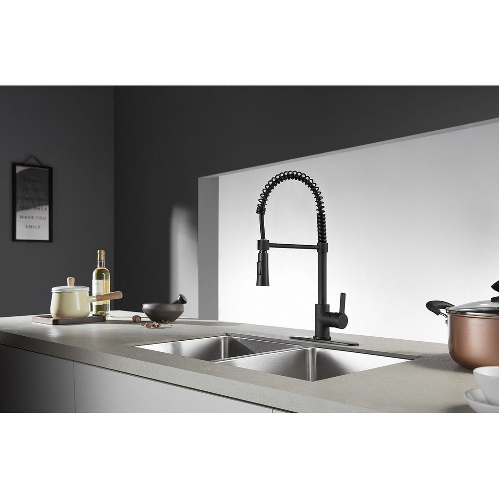 Continental Single-Handle 1-Hole Deck Mount Pre-Rinse Kitchen Faucet