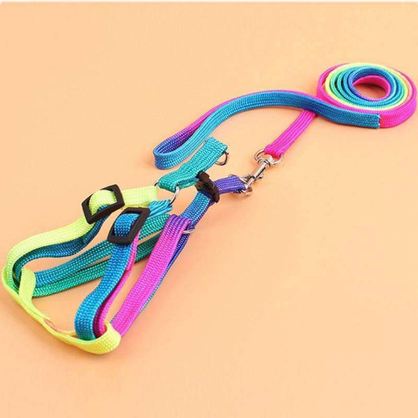 Adjustable Nylon Dog Leash Harness For Small and Medium Dog M