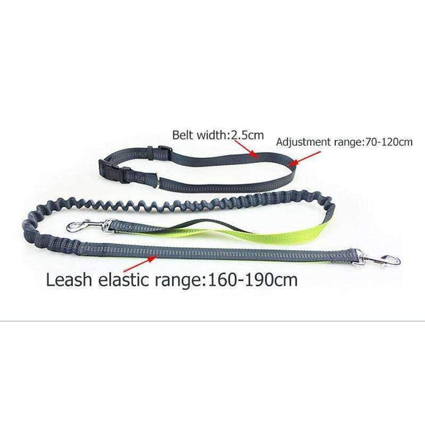 Adjustable Reflective Hands Free Dog Leash For Running Walking Jogging Hiking