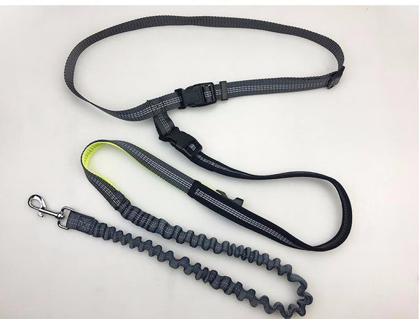 Adjustable Reflective Hands Free Dog Leash With Waterproof Pocket