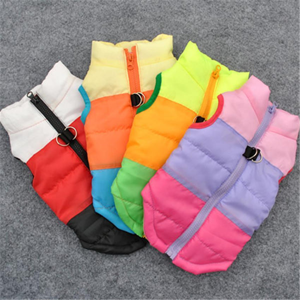 Colorful Warm Winter Jacket For Small Dogs And Puppies