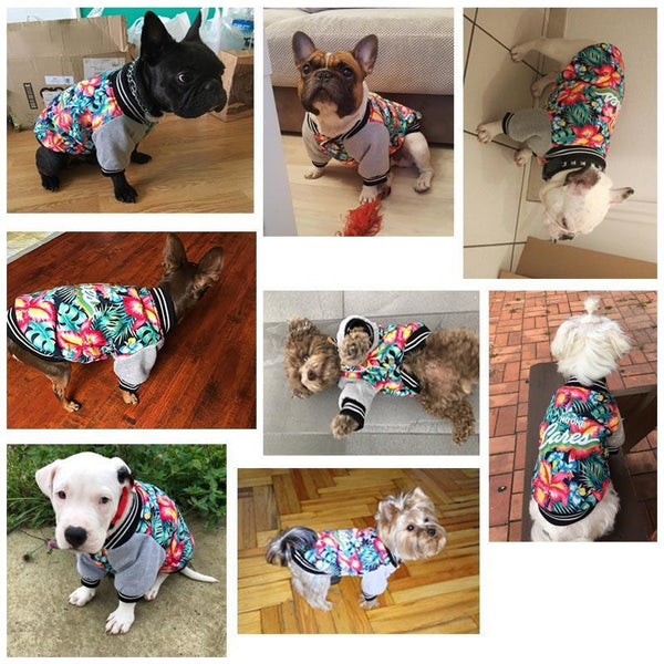Fancy Hawaii Aloha Dog Clothes