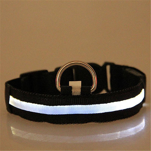 PREMIUM GLOW-IN-THE-DARK LED SAFETY COLLAR Black / L
