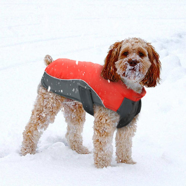 Warm Reflective Waterproof Dog Vest Jacket For Small Medium Large Dogs