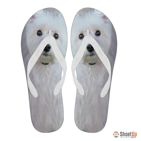 Westie Flip Flops For Men-Free Shipping