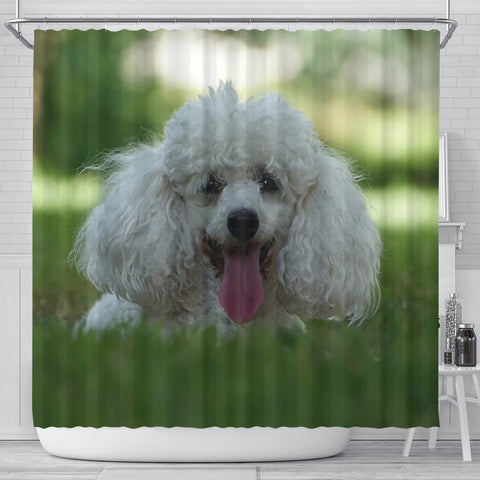 Cute Poodle Puppy Print Shower Curtains-Free Shipping