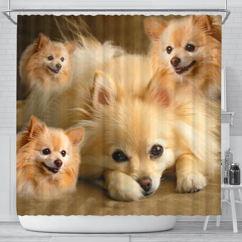 Pomeranian Print Shower Curtains-Free Shipping