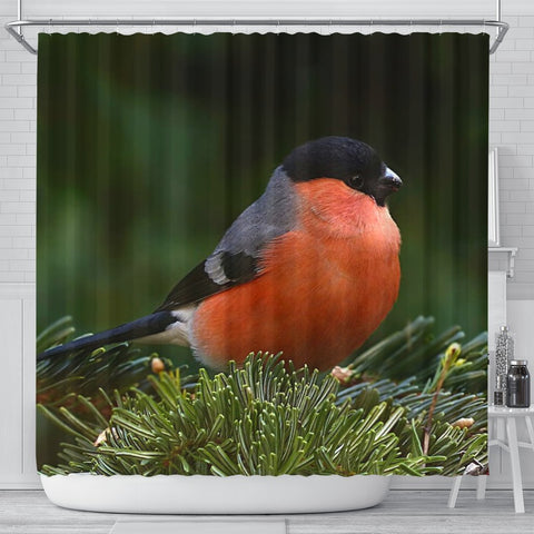 Lovely Bullfinch Bird Print Shower Curtains-Free Shipping