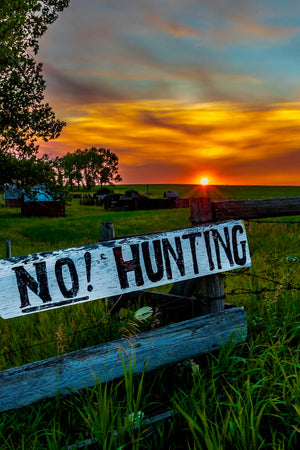 No Hunting / Art Photography /  Carmen MacLeod