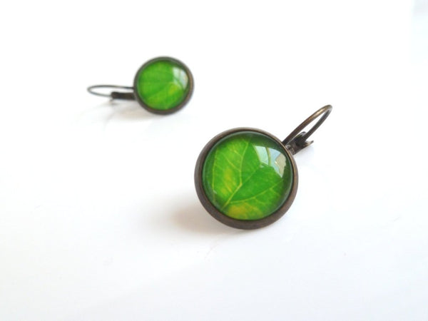 Green Leaves Earrings - glass covered leaf photograph in round bezel dangle - antique brass / bronze leverback - simple fresh spring style
