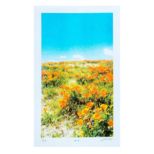 Superbloom Sky, 2017 - Numbered Risograph Print - Next Chapter Studio