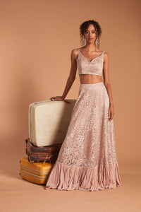 Pink lehenga with metallic velvet details, a ruffle detail at the bottom, and the dupatta