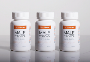 MALE PRENATAL 3 Month Pack