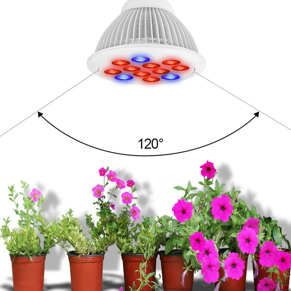 Hydroponic Plant Growing Lights - groomin101