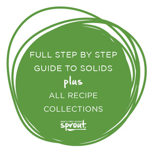 Easy Step by Step Guide to Solids + ALL Recipe Collections Combo