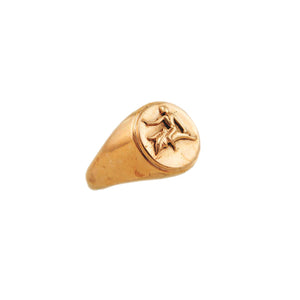 Dolfin Coin Ring Rose Gold