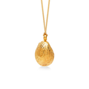 Shell 24K Gold Plated