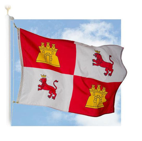 Lions and Castles Outdoor Flag
