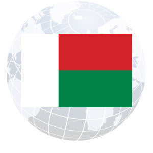 Madagascar Outdoor Flags