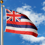 Hawaii Polyester Outdoor Flags